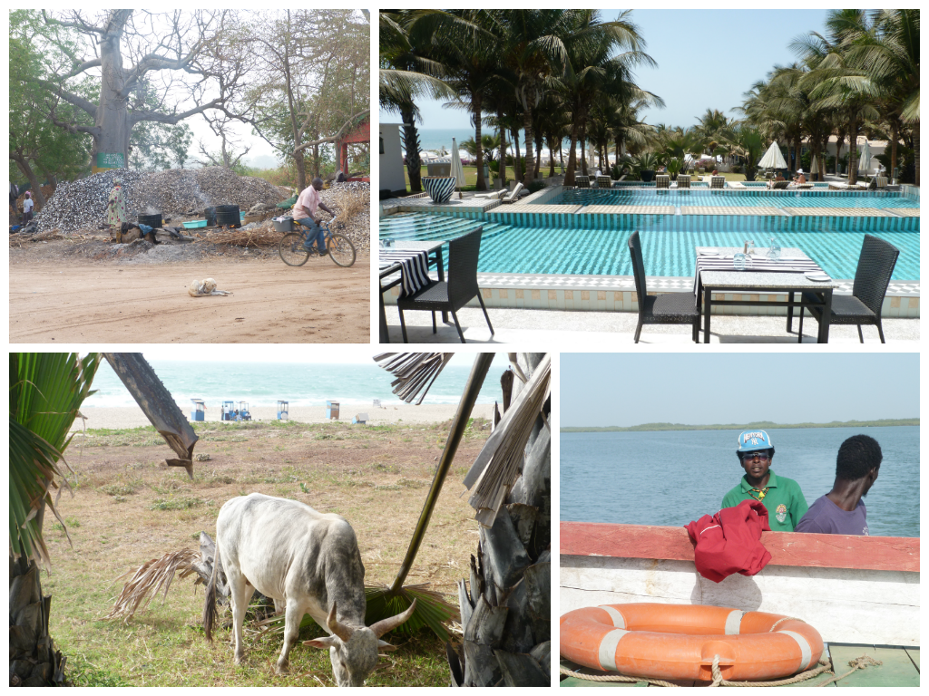 gambia collage 1