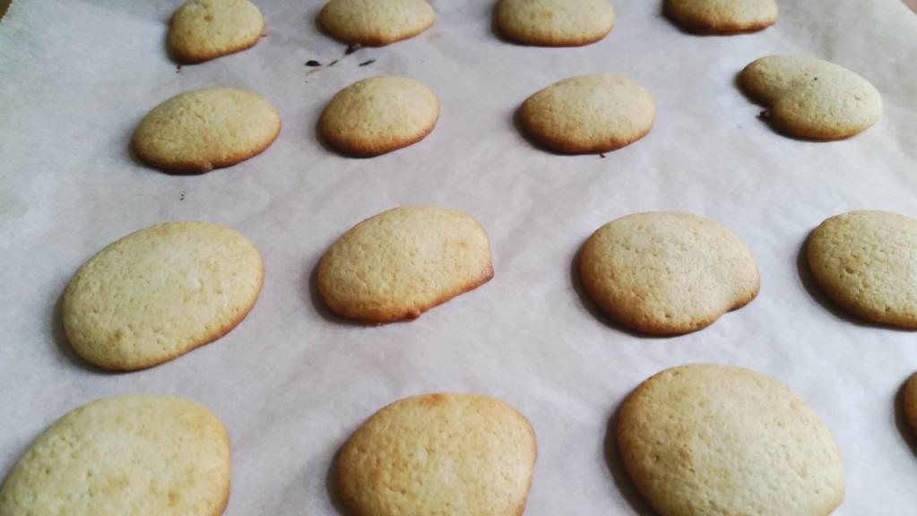 whoopie pies bakken