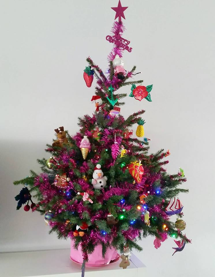 kerstboom hare maristeit 2015
