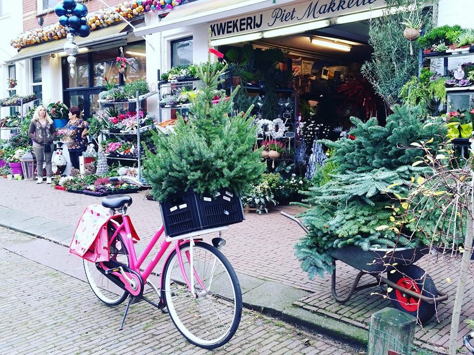 kerstboom in fietskrat