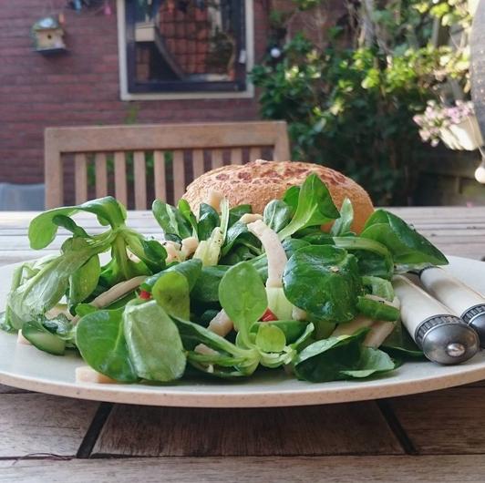 kiwi salade