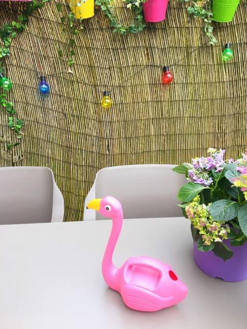 flamingo gieter en solar lampjes xenos
