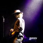 Concertbezoek: The Doors Alive